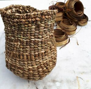 Discovery of basketry